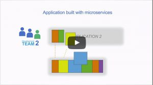 Link to explainer video on how microservices work